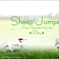 Sheep Jumper