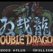 Double Dragon Advance
